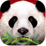 Wild Panda Casino Slot Game