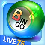 Bingo City Live HD