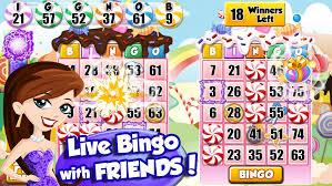 bingo-partyland-1